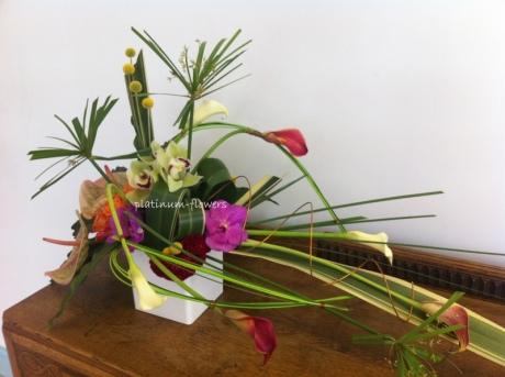 plat flowers 5